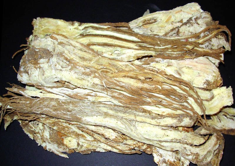 Dang Gui - Chinese Angelica Root